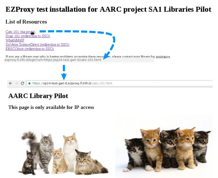 Libraries EZproxy access mode switch pilot - AARC - GÉANT